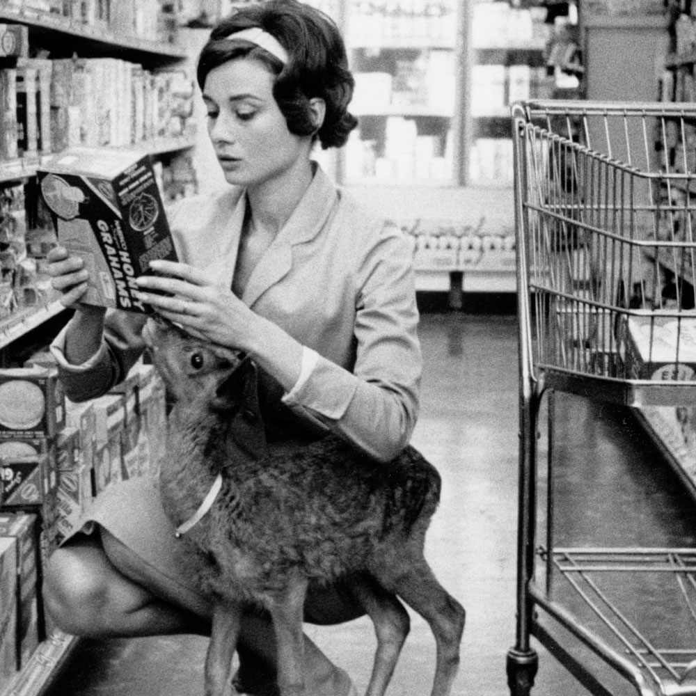 Audrey Hepburn and Pippin the fawn