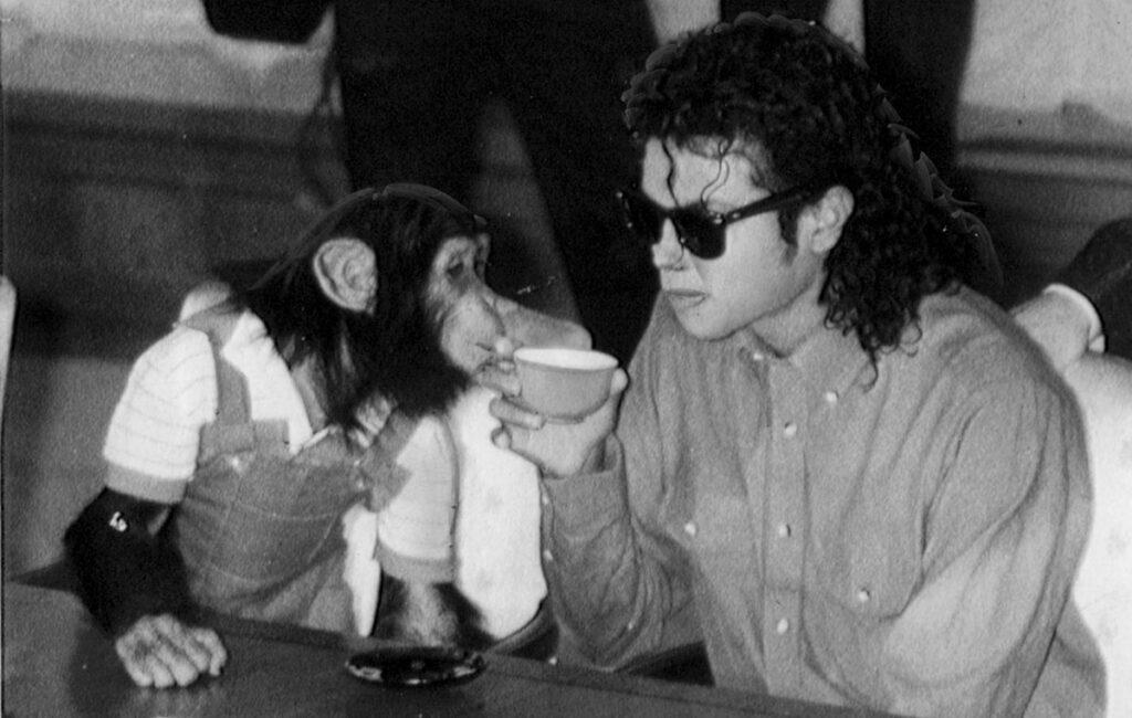 Michael Jackson's chimpanzee, Bubbles